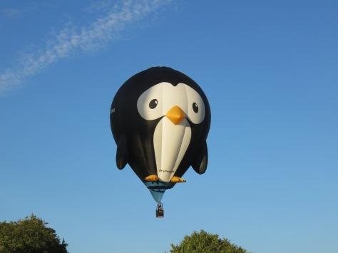 Balloon Fiesta 13