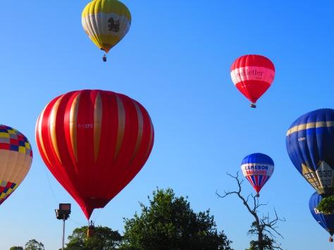 Balloon Fiesta 16